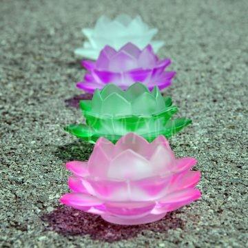 lotosový kvet svietnik